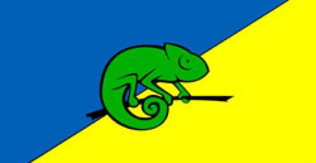 The TCK Flag